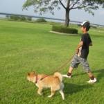 犬と夏のドッグラン