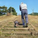 老犬介護のバリアフリー